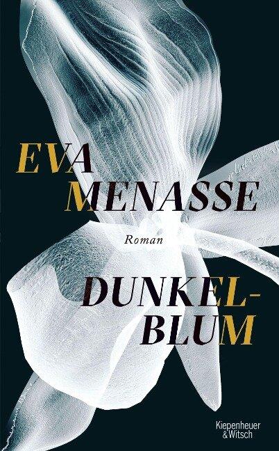 Dunkelblum - Eva Menasse